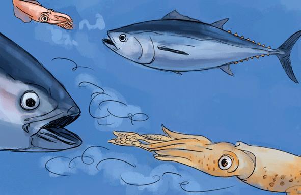 Ilustración de atunes y calamares