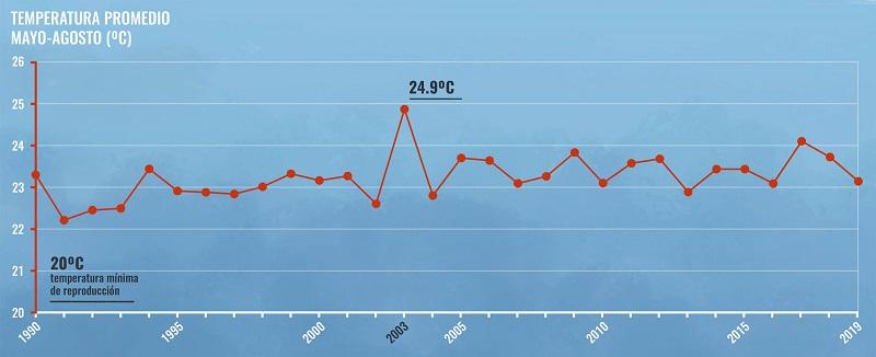 Gráfica que muestra la evolución de la temperatura promedio durante mayo-agosto desde 1990 hasta 2019.