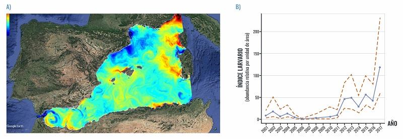 Mapa con la distribución espacial de la temperatura, por colores, en la zona occidental del Mar Mediterráneo. Y gráfica con la evolución de la abundancia larvaria desde 2001 hasta 2017.