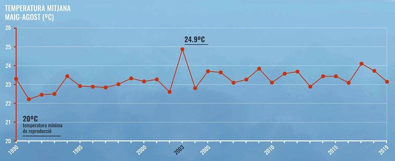 Gràfica que mostra l'evolució de la temperatura mitjana durant maig-agost des de 1990 fins el 2019.